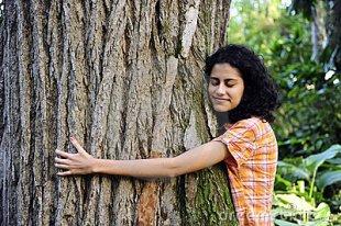vrouw-die-een-boom-het-bos-koestert-14426793